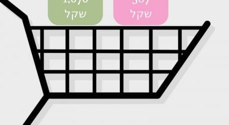 סל מוצרים זהה רגע לפני פסח: 567 שקל ברמי לוי בבאר שבע, 1,070 שקל בטיב טעם בתל אביב