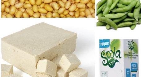 כמה סויה מומלץ לאכול? משרד הבריאות מתקן את עצמו: לא רק שסויה בריאה, היא אף מומלצת