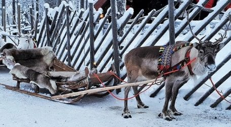 ספארי חורף בלפלנד – טיול מאורגן במחיר מפתיע, כולל חגים